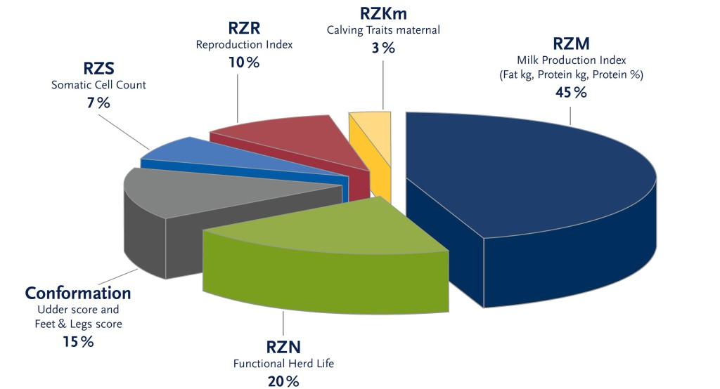 RZG - Kreisdiagramm_new